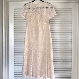 Lauren Ralph Lauren Loki Lace Cocktail Dress